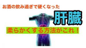 内臓整体 腰痛